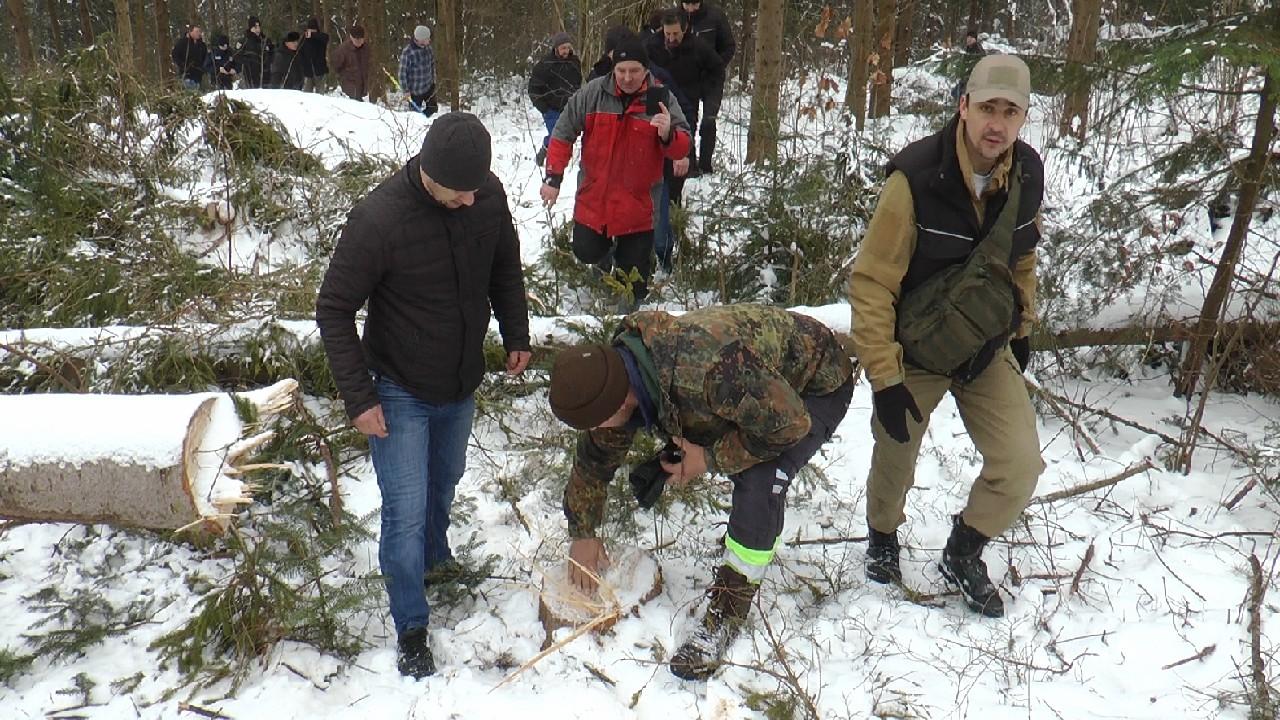 Жителі Яблуньки протестують проти вирубки лісу
